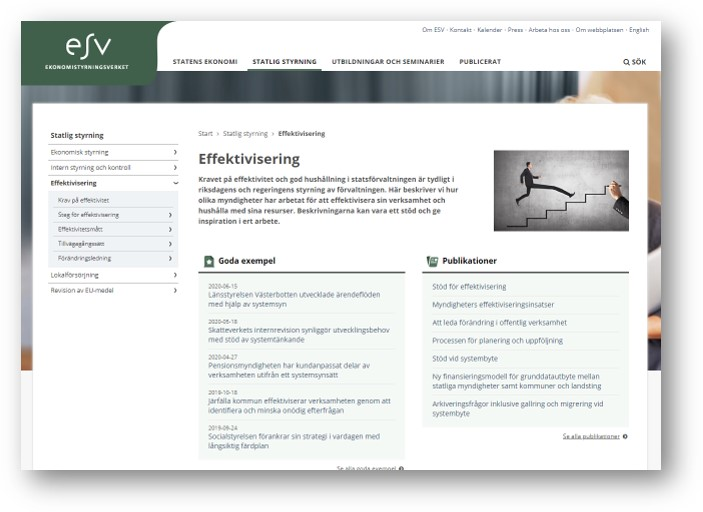 skärmdump från ESVwebb om effektivisering